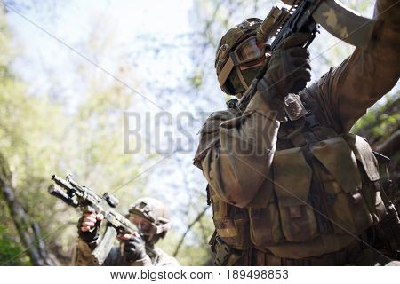Group of military intelligence in woods during day