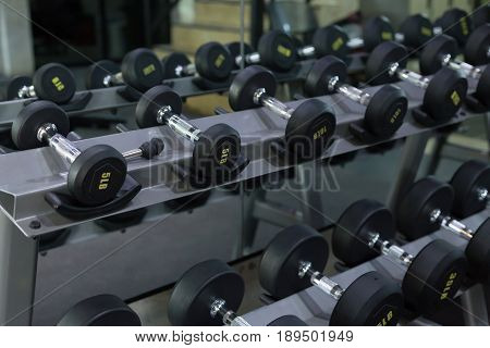 Dumbbell Set In Fitness Gym Workout Weights Traning