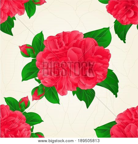 Seamless texture Camellia Japonica red flowers with buds vintage hand draw vector botanical illustration for design