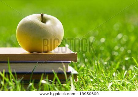 Apfel auf Stapel von Büchern über Gras. Bildung Konzept, zurück in die Schule.