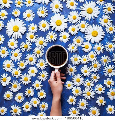 Floral summer background. A mug of coffee in a woman's hand on a blue background with chamomile or daisies. Hello summer. The concept of the arrival of summer mood and heat. Flat lay composition.