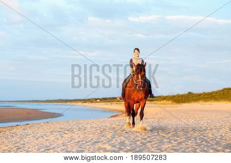Cheerful teenage girl riding horse on the beach at sunset. Baltic sea. Vibrant multicolored summertime outdoors horizontal image.