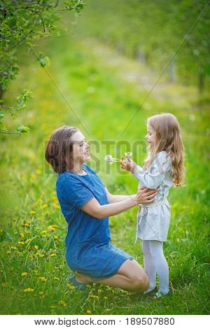 A little girl shows her mother how to blow off fluff from a bouquet of dandelions. White seeds are entangled in the woman's hair