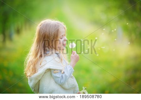 little girl blows off fluff from a bouquet of dandelions standing in the middle of an apple orchard. Seeds fly through the air