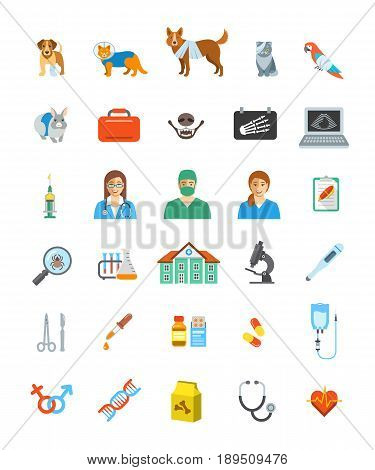 Vet clinic services vector icons. Pet treatment flat symbols. Domestic animals health care concepts. Bandaged dog, sick cat, ill puppy, kitten, parrot and rabbit. Veterinarian doctor, surgeon, nurse