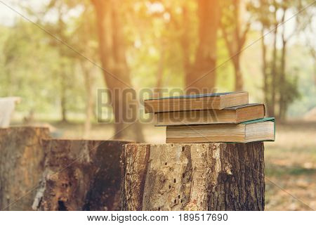 Ancient book on a Stump literacy and knowledge concept
