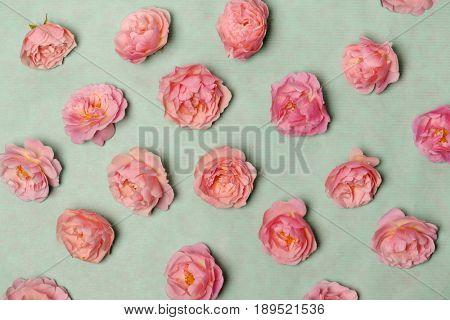 arrangement of pink roses