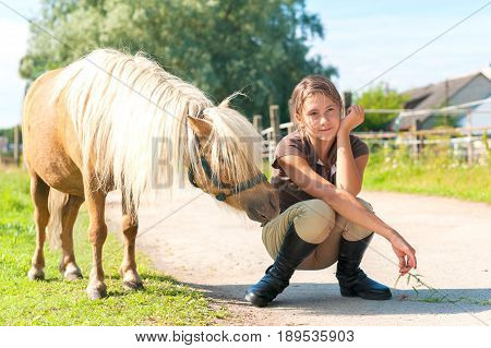 Obedient curious little shetland pony horse with his friend teenage girl. Multicolored summertime horizontal outdoors image.