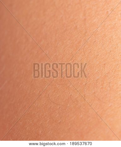 Background of the human skin. macro . A photo
