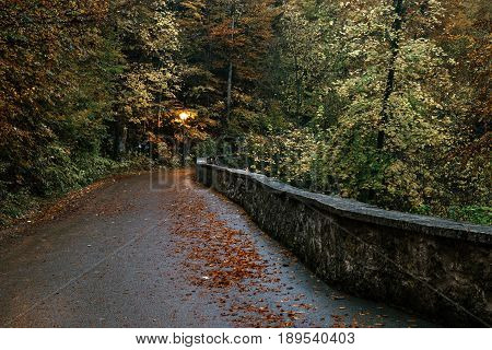 Hohenschwangau near Fussen in Bavaria Germany. The road for a walk on the Alpsee lake is surrounded by an autumn forest.