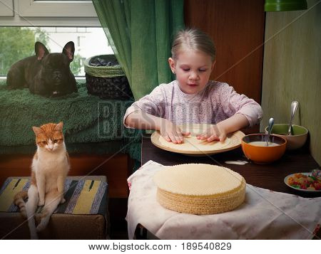 A Young Child Prepares A Cake In The Kitchen. Sweet Ingredients On The Table. Next To The Girl Pets