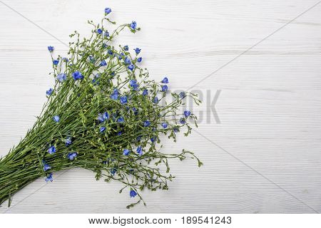 Bouqet of wild flowers on a white wooden background. Space for text.