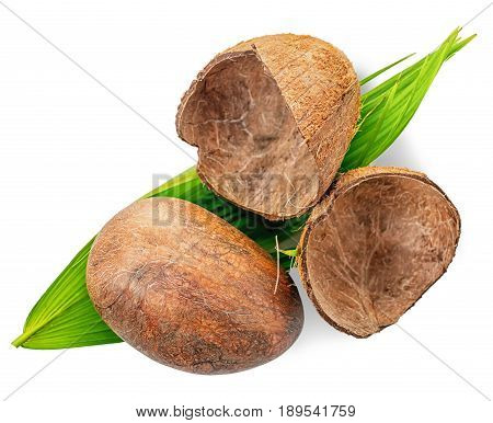 Top View Whole Coconut With Shell And Green Leaf, Close Up