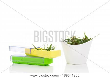 Medical marijuana. Marijuana buds in pill box isolated on white background.