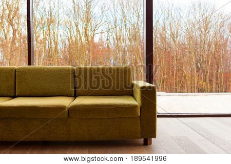 Green modern couch against glass wall with autumn trees. Modern trendy living desing.