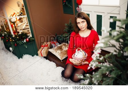 European girl in red dress hold in arms little white rabbit with grey area against the backdrop of New Year's tree and christmas toy store. Concept is preparation for new year, New Year's gift