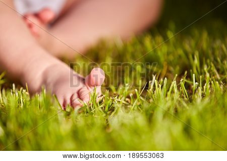 Close-up of little baby feet on green grass outdoors in the city park. Cute little feet. Horizontal photo. Baby's background. Summer or spring season. Concept of the happy babies.