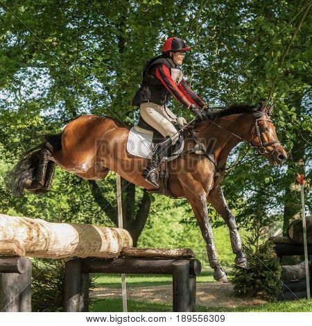 Houghton International Horse Trials Loretta Joynson Riding Psh Convivial
