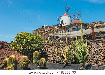 Lanzarote - March 29, 2017: View Of Cactus Garden With White Windmill In Guatiza, Popular Attraction