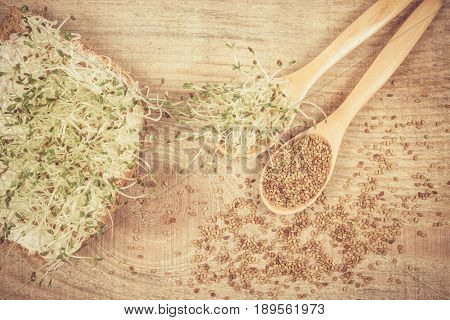 Fresh Alfalfa Sprouts And Seeds - Closeup.
