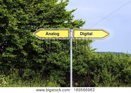 Yellow road signs pointing in opposite directions with text Analog Digital green bushes and a blue sky in the background symbol concept for future-oriented technology