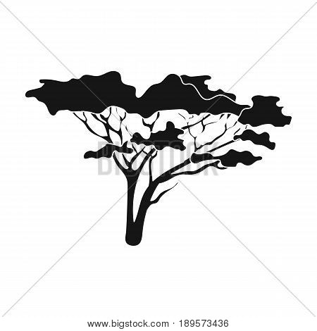 Tree in the savannah.African safari single icon in black style vector symbol stock illustration .
