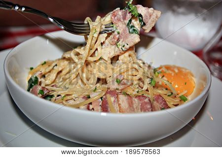 Pasta with bacon and herbs Pasta with white cream with fried bacon slices, with meat sauce topped with cheese strips and basil leaf served in a round white plate