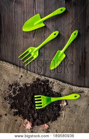 gardening equipment with rake and trowel for growing green plants on wooden desk background top view