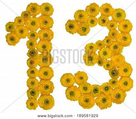 Arabic Numeral 13, Thirteen,  From Yellow Flowers Of Buttercup, Isolated On White Background
