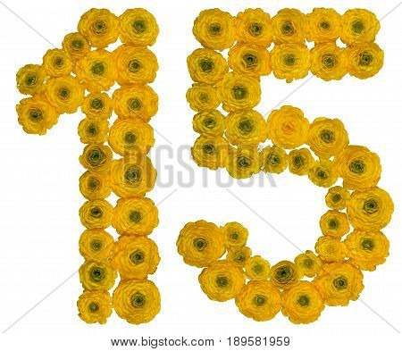 Arabic Numeral 15, Fifteen,  From Yellow Flowers Of Buttercup, Isolated On White Background