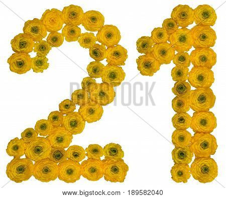 Arabic Numeral 21, Twenty One, From Yellow Flowers Of Buttercup, Isolated On White Background