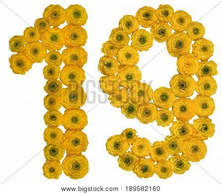 Arabic Numeral 19, Nineteen,  From Yellow Flowers Of Buttercup, Isolated On White Background