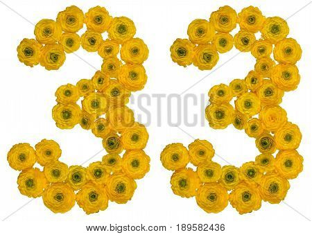Arabic Numeral 33, Thirty Three, From Yellow Flowers Of Buttercup, Isolated On White Background