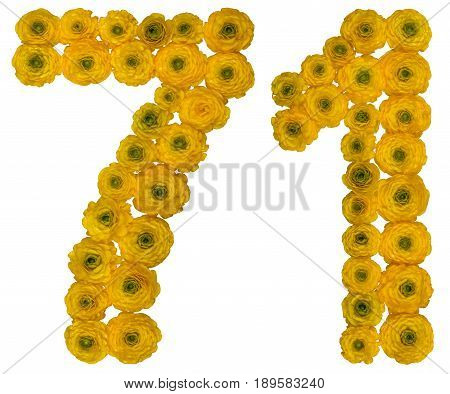 Arabic Numeral 71, Seventy One, From Yellow Flowers Of Buttercup, Isolated On White Background