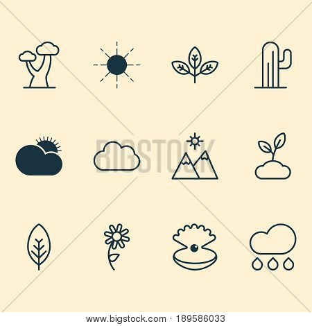 World Icons Set. Collection Of Tree Leaf, Plant, Sun And Other Elements. Also Includes Symbols Such As Rain, Cloudburst, Daisy.