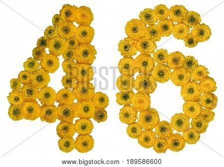 Arabic Numeral 46, Forty Six, From Yellow Flowers Of Buttercup, Isolated On White Background