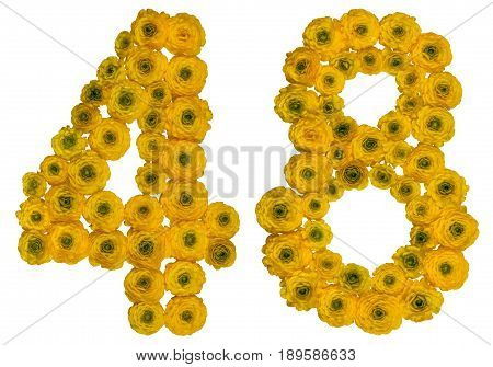 Arabic Numeral 48, Forty Eight, From Yellow Flowers Of Buttercup, Isolated On White Background