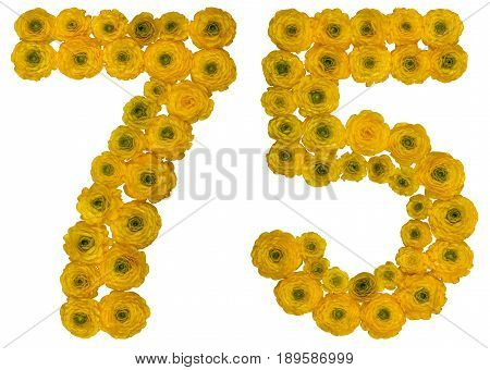 Arabic Numeral 75, Seventy Five, From Yellow Flowers Of Buttercup, Isolated On White Background