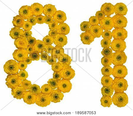 Arabic Numeral 81, Eighty One, From Yellow Flowers Of Buttercup, Isolated On White Background