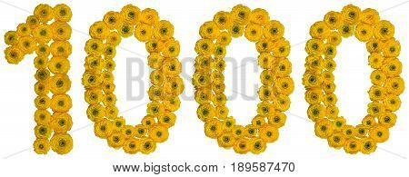 Arabic Numeral 1000, One Thousand, From Yellow Flowers Of Buttercup, Isolated On White Background