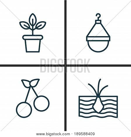 Icons Set. Collection Of Growing Plant, Flowerpot, Hanger And Other Elements. Also Includes Symbols Such As Scale, Weight, Hanger.