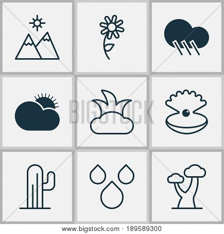 Harmony Icons Set. Collection Of Cactus, Seashell, Bush And Other Elements. Also Includes Symbols Such As Landscape, Shrub, Sunflower.