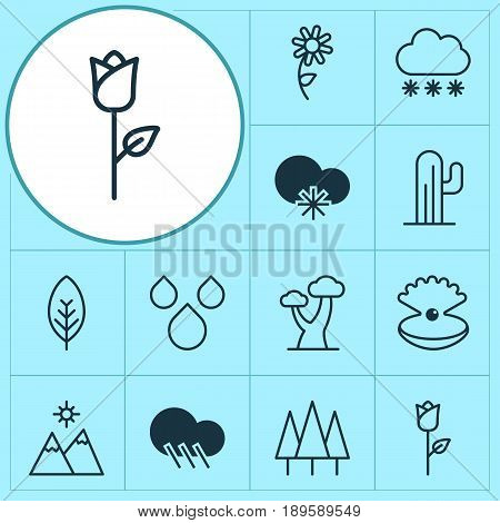 Ecology Icons Set. Collection Of Snowstorm, Sunflower, Tree Leaf And Other Elements. Also Includes Symbols Such As Pearl, Sunflower, Cloud.
