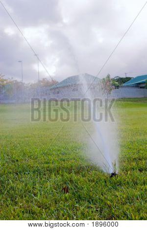 Sprinkler 2