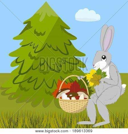 The hare carries a basket of mushrooms and bouquet of colorful leaves on a autumn day in the forest glade, vector illustration