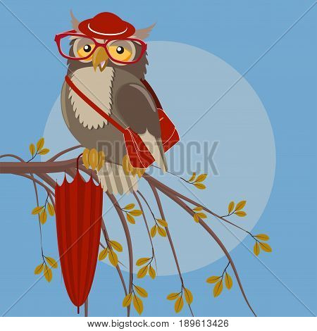 Owl with glasses and hat, with an umbrella and a bag on a tree branch with leaves, vector illustration