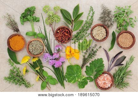 Fresh and dried herb selection on hemp paper background.