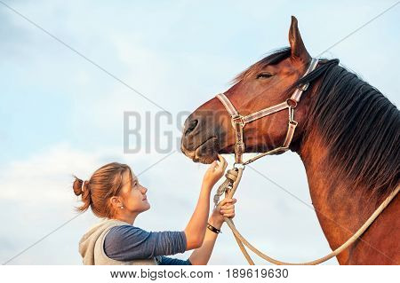 Young cheerful teenage girl stroking big chestnut horse's nose. Vibrant multicolored summertime outdoors horizontal image with filter