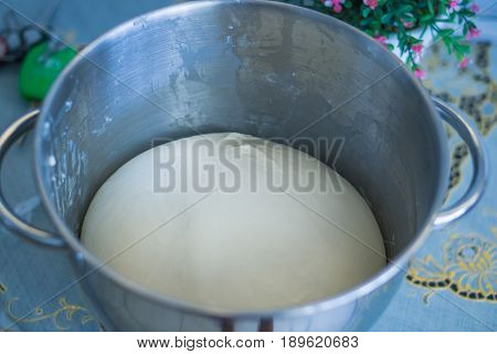 Dough Swell up for Baking Bread in stainless bowl