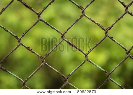 Rusty fence with green vegetation in the background.